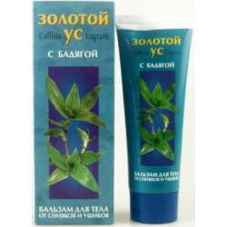 Basket Plant with Spongilla - Balsam for Body