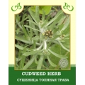 Cudweed Herb
