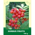Sorbus Fruits
